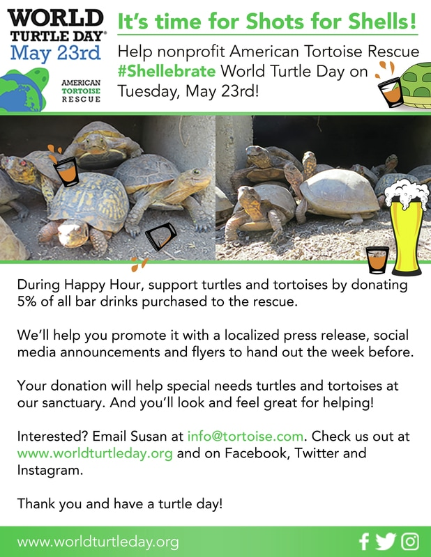 Shellebrate World Turtle Day - Happy World Turtle Day May 23